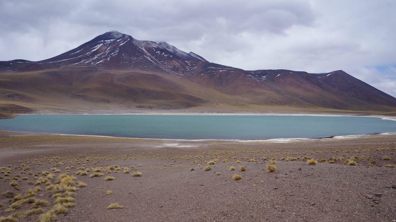Inverno Altipânico chove no Deserto de Atacama